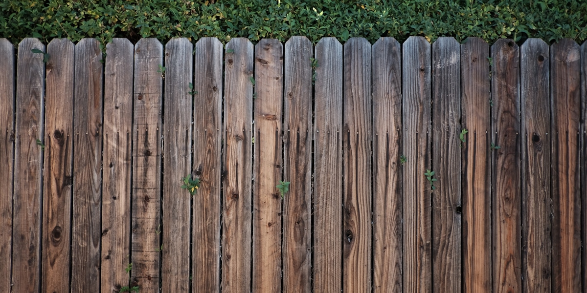 Which Garden Fence Type is Best? | ColourFence