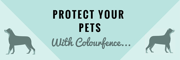 Protect Your Pets2