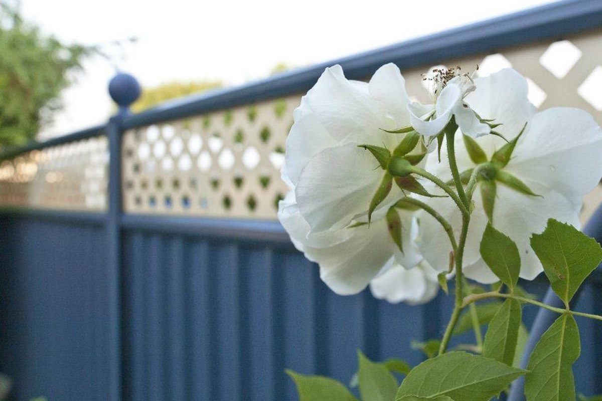 ColourFence sales double in just 18 months